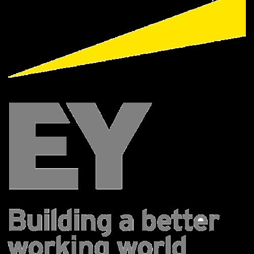 Ey logo13